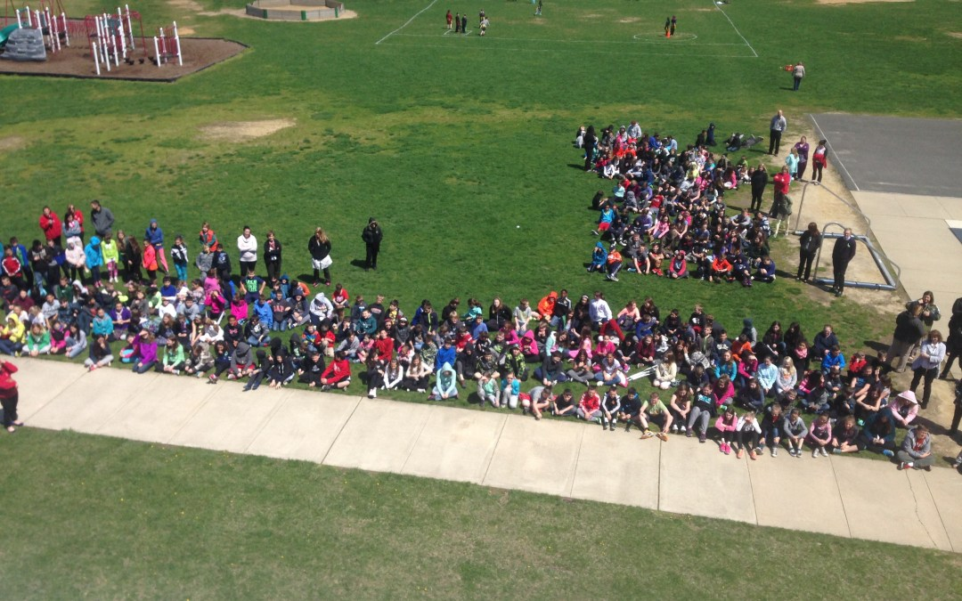 STEM – Egg Drop Day! Pictures and Reflection