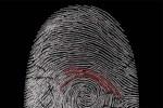 Verizon, attenzione alle minacce informatiche interne