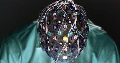 Scientists develop AI that translates brainwaves into sentences
