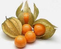 Makoy Fruit