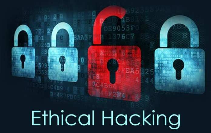 ethical hacking: Ethical Hackers