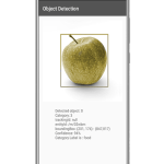 Object Detection in Android Using Firebase ML Kit