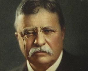 Motivational Theodore Roosevelt Quotes