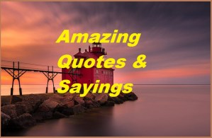MOtivational Amazing Quotes & Sayings