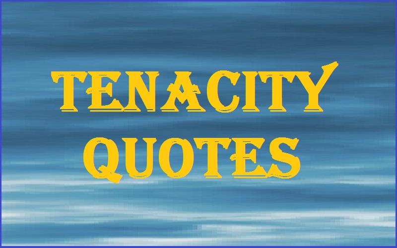 Tenacity Quotes