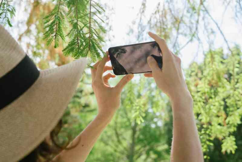 apps smartphone fotografie