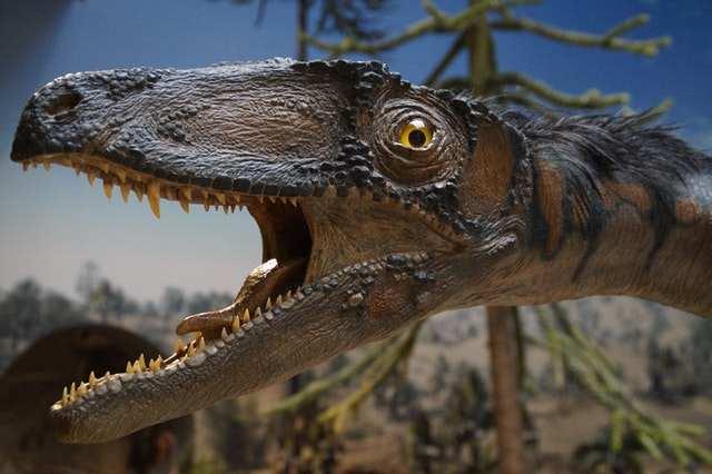 What Dinosaur has 500 Teeth? – Racist meme of 2021