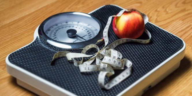 Best apps to lose weight