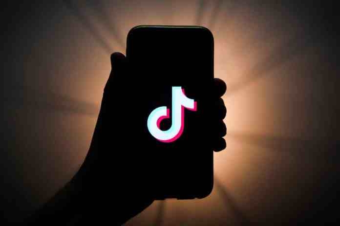 Embed TikTok Videos In WordPress