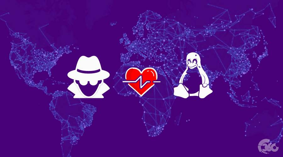 Why Real Hackers Prefer Linux Distro Over Other OS