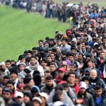 International Migrants Increasing
