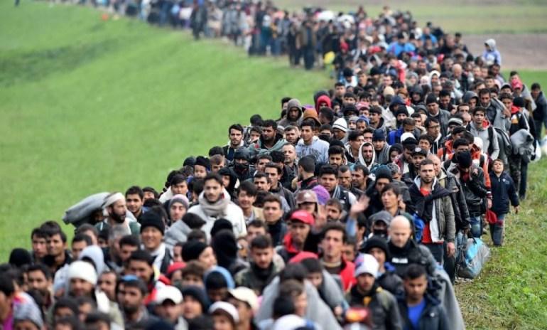 International Migrants Increasing