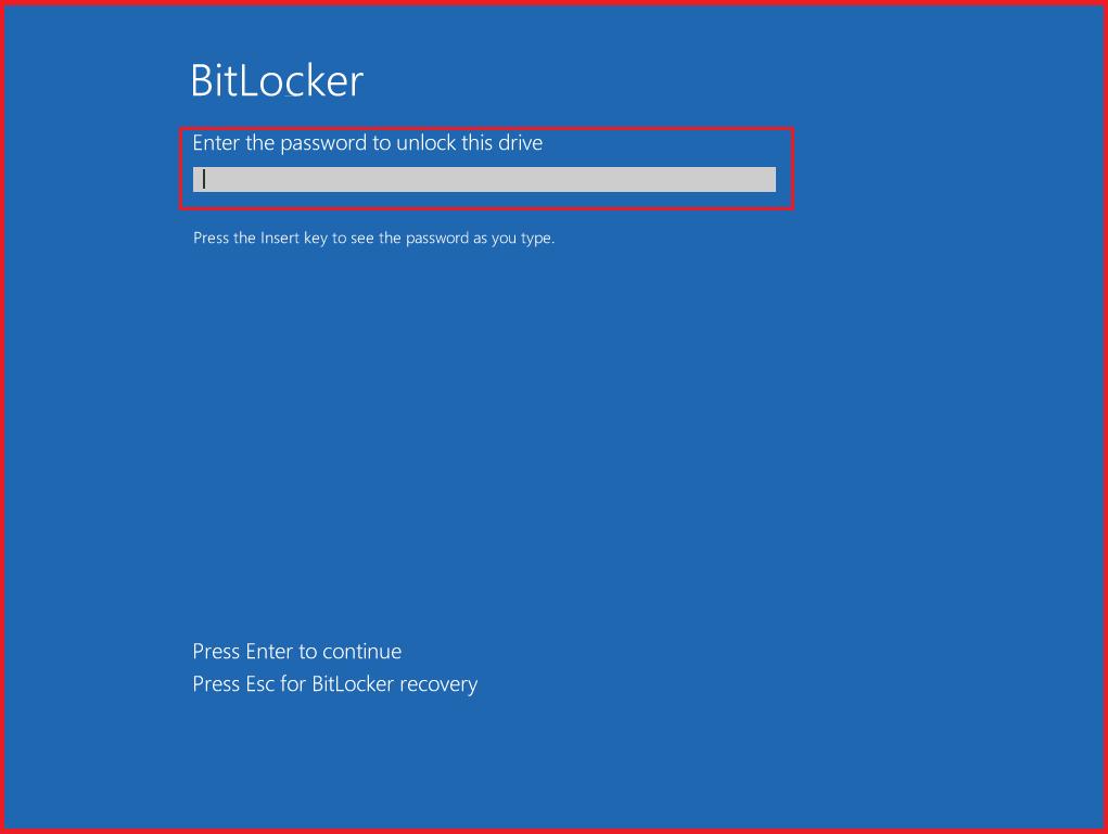 Enter Your BitLocker password on startup
