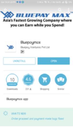 bluepaymax app review