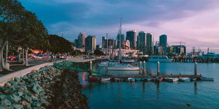 marina during golden hour