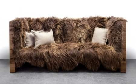 wookie sofa 620x386