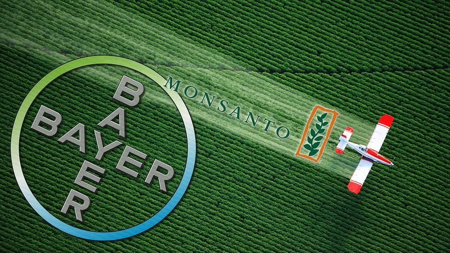 독일 제약사 바이엘 (Bayer), GMO (유전자 변형 작물) 분야에 선두인 미국 몬산토 (Monsanto) 인수 합의