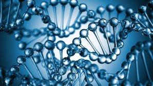 Biotech stock market news