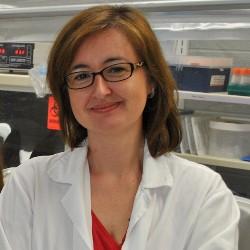 Gemma Reguera (Michael Steger, Michigan State Univ.)