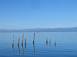 Salton Sea (Colin Brown)