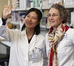 Wei Yao and Nancy Lane (University of California, Davis)