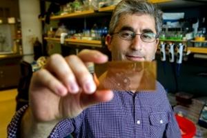 Brian Feldman holds chip device