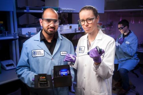 Sandia Lab researchers