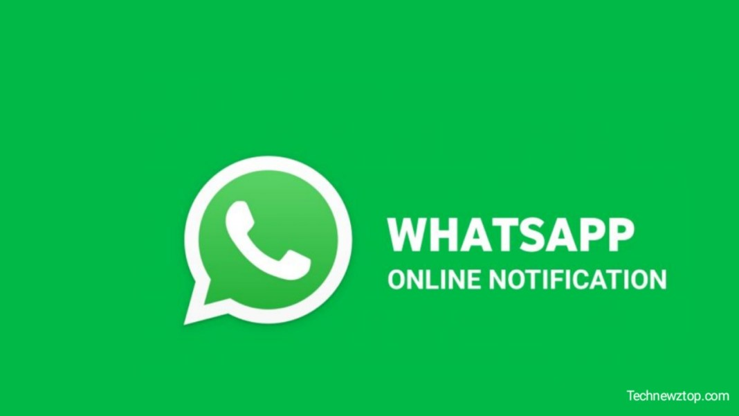 Download Hogatoga Whatsapp Tracker