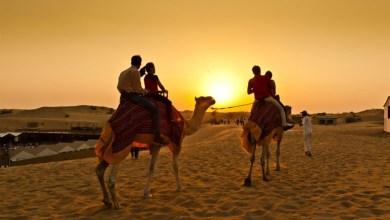 A Daybreak In A Morning Desert Safari