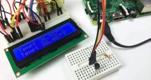 USB Temperature Sensor Raspberry Pi