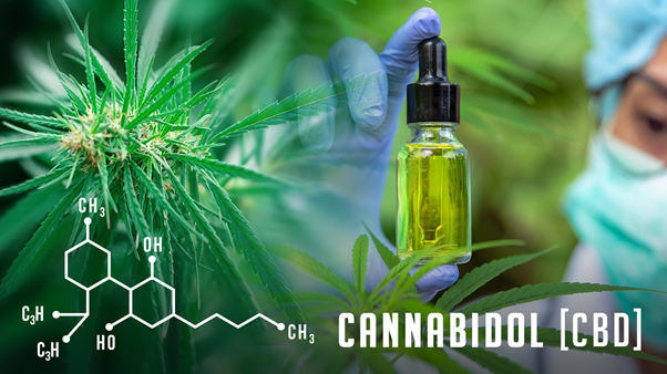 3 CBD Oil Extraction Methods and the One That's the Best