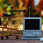 Shopping Online with Confident Steps