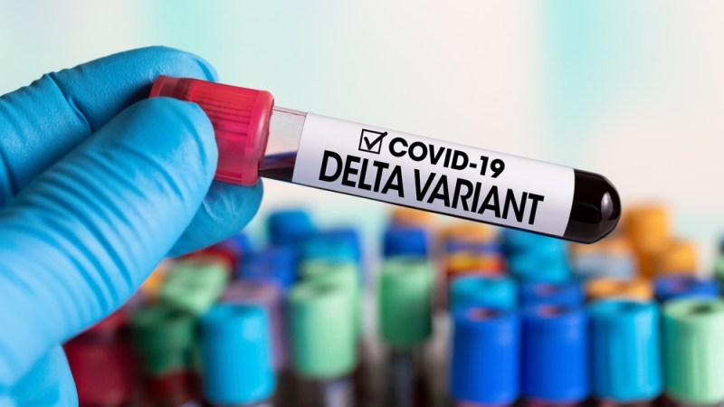 COVID-19: DELTA AND ITS PREVENTION