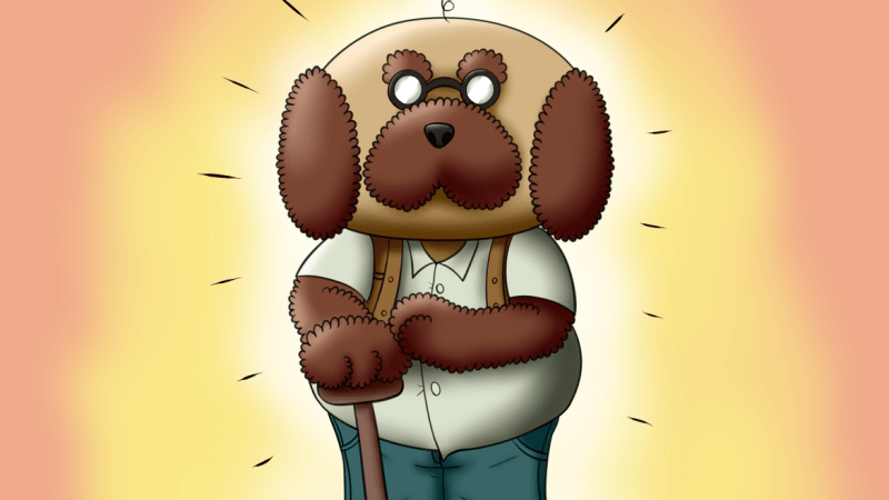 Pappy Van Poodle is a character of Nintendo that nobody knows