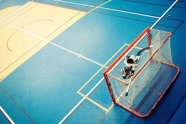 Cage et terrain de roller-hockey