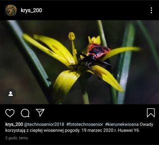 krys_200_1