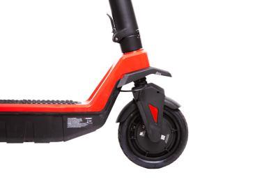 Rider RS Sport