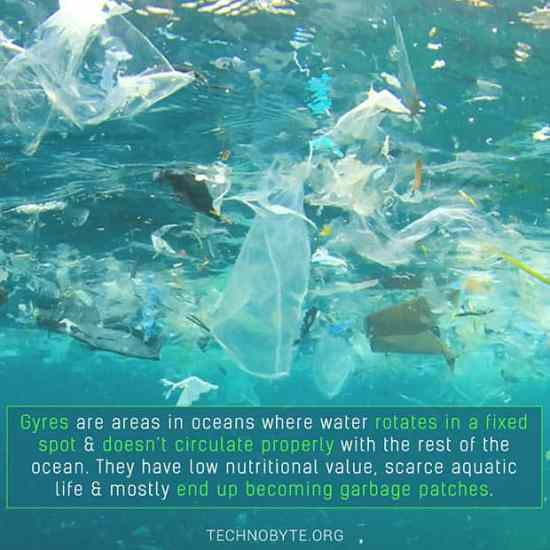 Gyre - what are gyres?