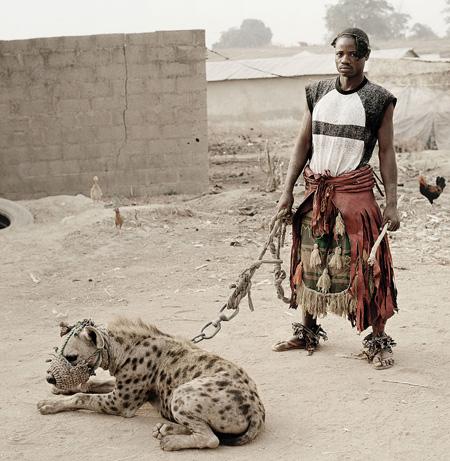 Hyena Guides