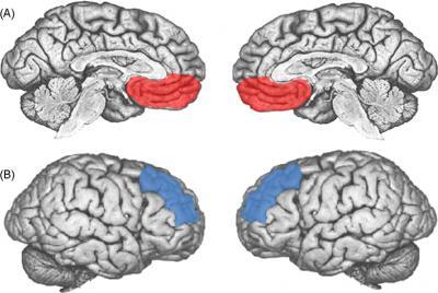 neuroscience of jazz
