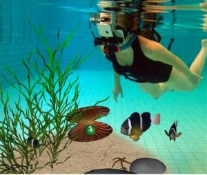 augmented reality diving
