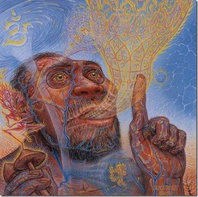 Alex Grey, stoned ape