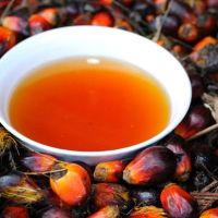How Palm Oil Is Made