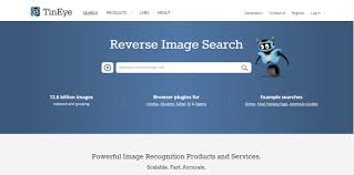 tiny-eye-reverse-image-search