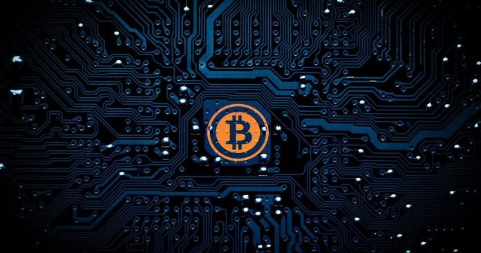 Best Bitcoin wallet in India