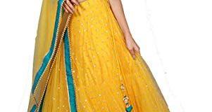 NPLASH FASHION Women's Net Lehenga Choli (roop yellow-a_Blue & Yellow_Free Size)