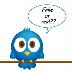 Twitter Fake Followers