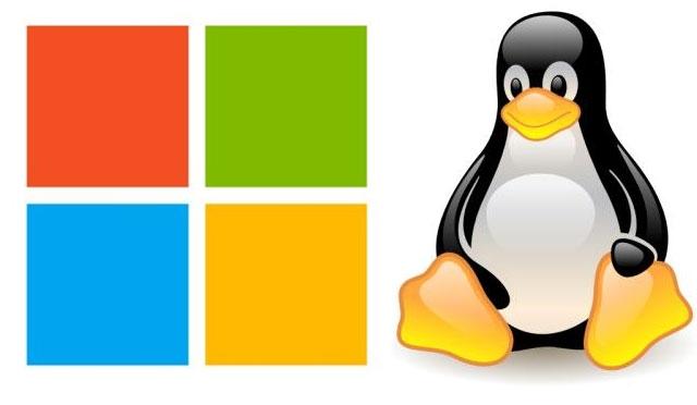 Windows Webhosting and Linux Webhosting