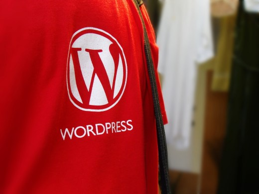 Customized WordPress Website