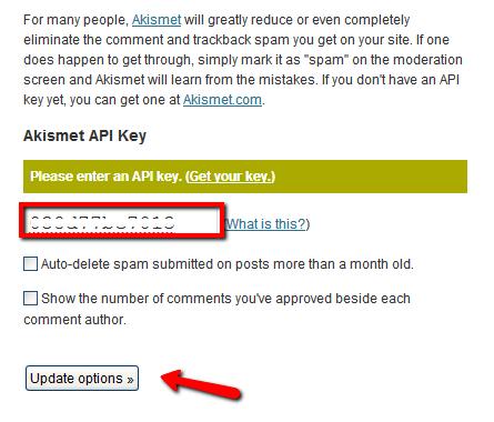 Akismet API Key